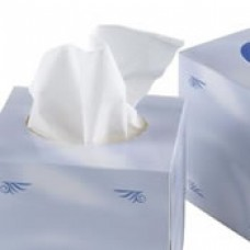 Luxury Cube Facial Tissues 70 Sheets, 2 ply Case of 24
